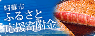 Aso City home tax payment banner