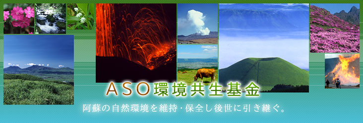 ASO environment symbiosis fund