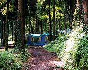 国立阿蘇青少年交流の家キャンプ場