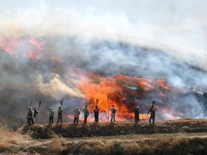野焼きの風景写真