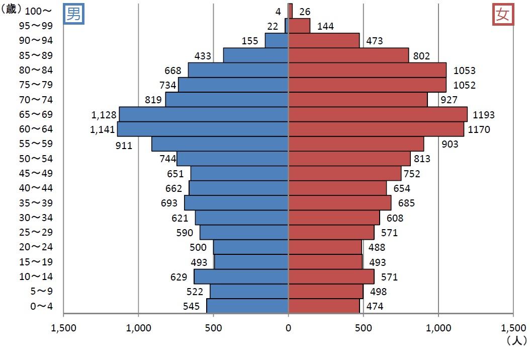 男女別、年齢別人口グラフ